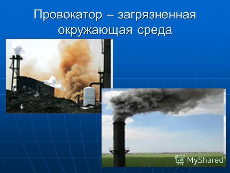 Провокатор – загрязненная окружающая среда