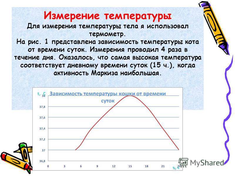 Измерение температуры Для измерения температуры тела я использовал термометр. На рис. 1 представлена зависимость температуры кота от времени суток. Измерения проводил 4 раза в течение дня. Оказалось, что самая высокая температура соответствует дневно