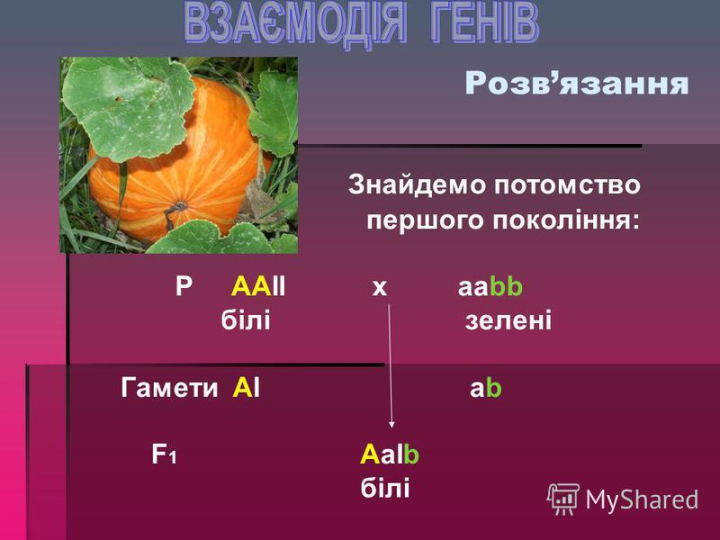 Задача на домінантний епістаз При схрещуванні безбарвного гарбуза із гарбузом зеленого кольору в першому поколінні всі плоди безбарвні. Яке потомство отримають в F 2, якщо один із домінантних генів в генотипі є інгібітором, жовтий колір гарбуза – дом