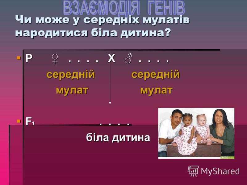 Аналогічно успадковується колір шкіри у людини А 1 А 1 А 2 А 2 – чорношкірі А 1 А 1 А 2 А 2 – чорношкірі А 1 А 1 А 2 а 2 або А 1 а 1 А 2 А 2 – А 1 А 1 А 2 а 2 або А 1 а 1 А 2 А 2 – темні мулати темні мулати А 1 а 1 А 2 а 2 або а 1 а 1 А 2 А 2 А 1 а 1
