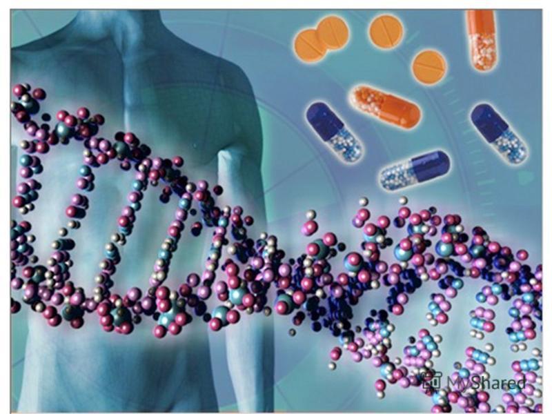 генотип Отже, генотип особин кожного виду є цілісною системою цілісною системою, хоча складається з окремих генів, які можуть відокремлюватись один від одного й успадковуватись незалежно; його цілісність, яка склалася в процесі тривалого історичного