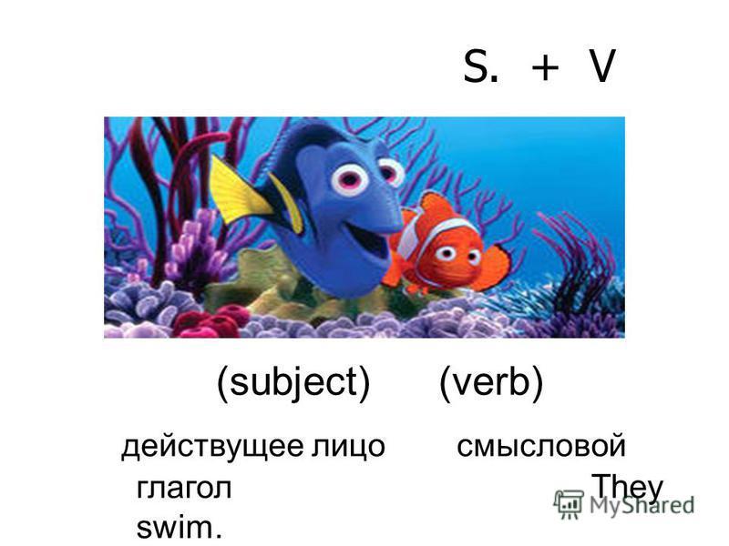 S. + V (subject) (verb) действующее лицо смысловой глагол They swim.