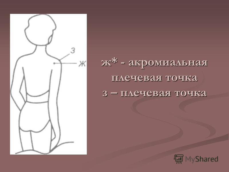 ж* - акромиальная плечевая точка з – плечевая точка