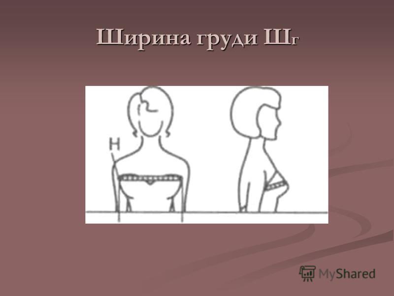 Ширина груди Ш г