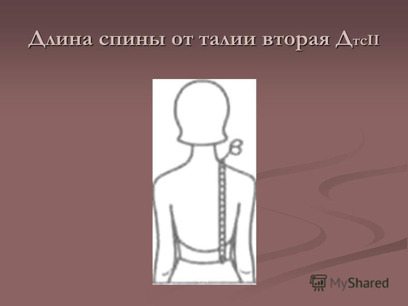 Длина спины от талии вторая Д тсII