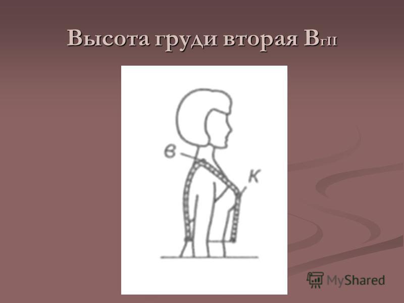 Высота груди вторая В г II