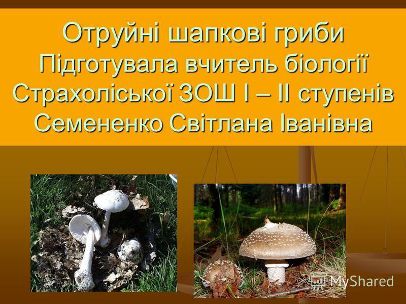 Отруйні шапкові гриби Підготувала вчитель біології Страхоліської ЗОШ І – ІІ ступенів Семененко Світлана Іванівна