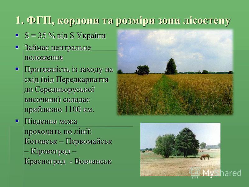 1. ФГП, кордони та розміри зони лісостепу S = 35 % від S України S = 35 % від S України Займає центральне положення Займає центральне положення Протяжність із заходу на схід (від Передкарпаття до Середньоруської височини) складає приблизно 1100 км. П