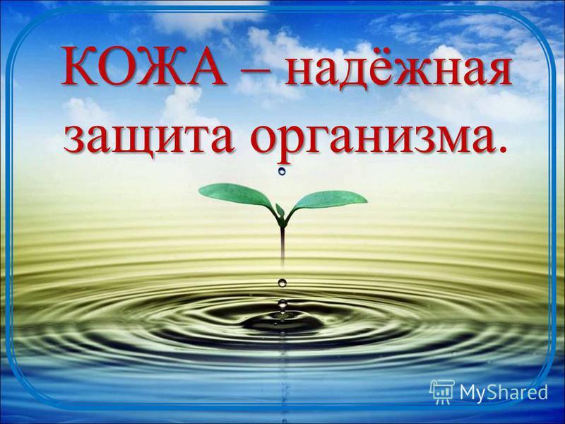 КОЖА – надёжная защита организма КОЖА – надёжная защита организма.