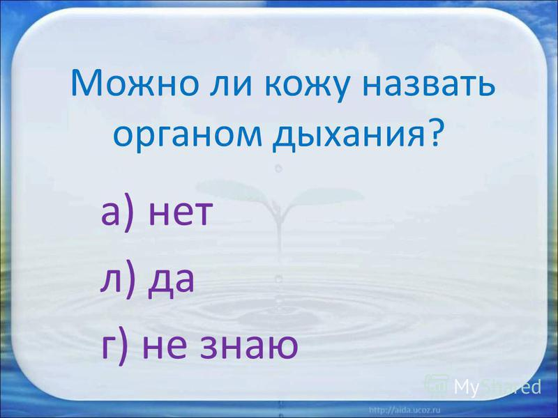 Можно ли кожу назвать органом дыхания? а) нет л) да г) не знаю