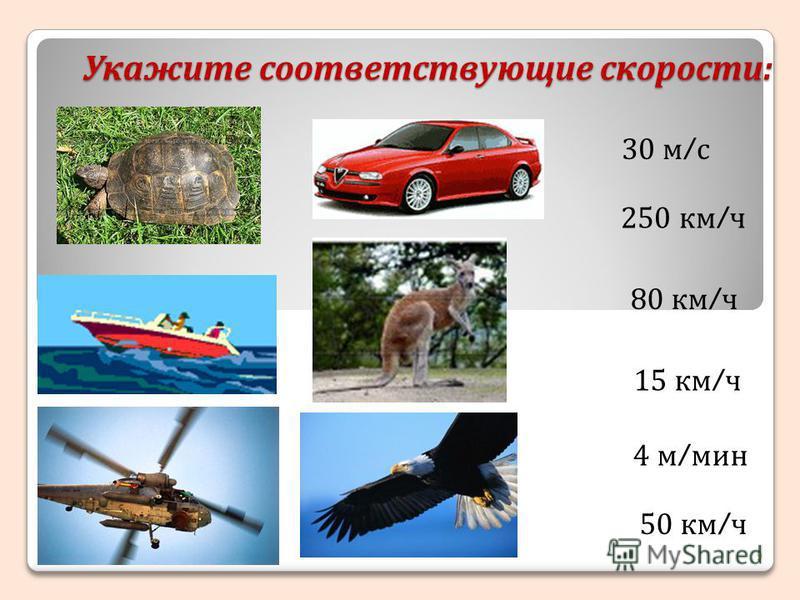 Укажите соответствующие скорости: 9 30 м / с 250 км / ч 80 км / ч 15 км / ч 4 м / мин 50 км / ч