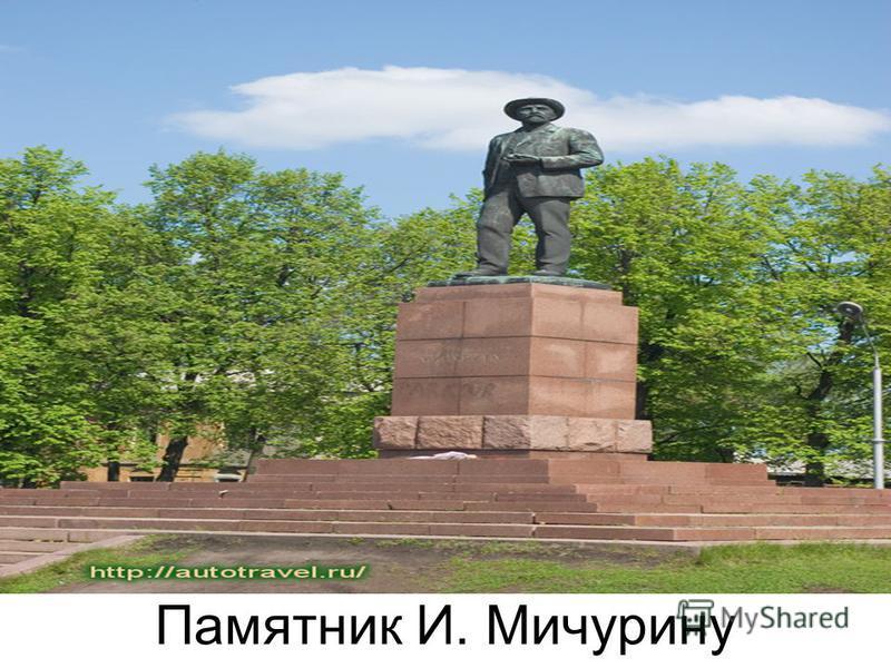 Памятник И. Мичурину Паимтник