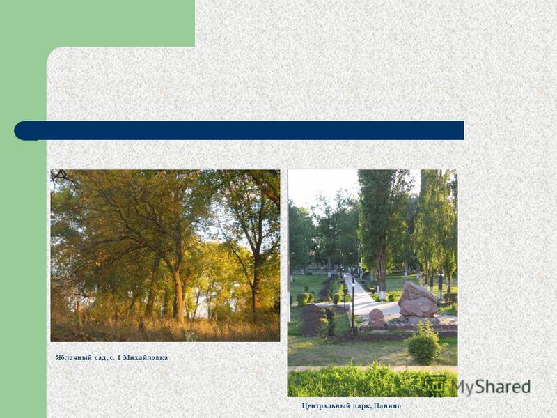 Яблочный сад, с. 1 Михайловка Центральный парк, Панино