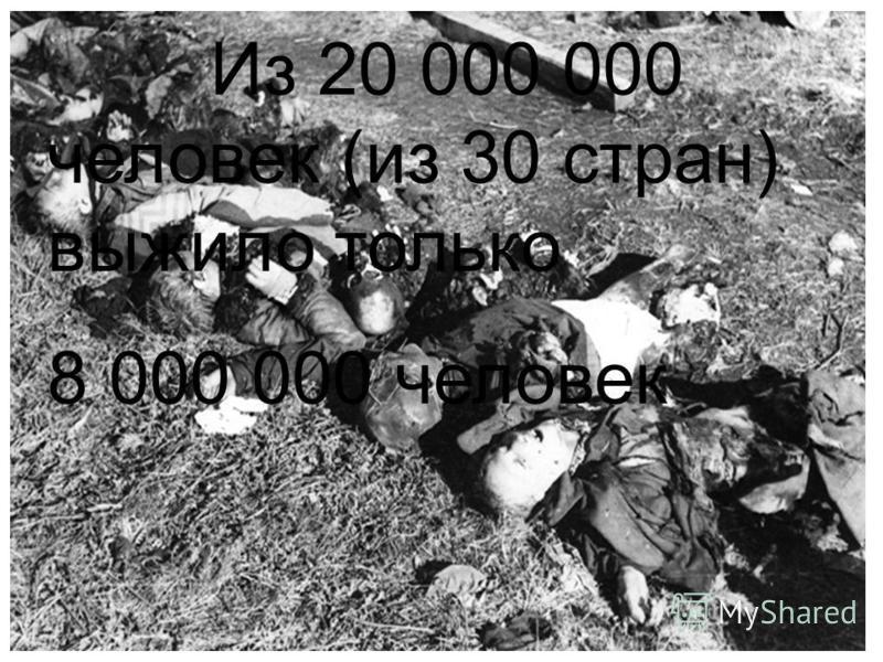Из 20 000 000 человек (из 30 стран) выжило только 8 000 000 человек