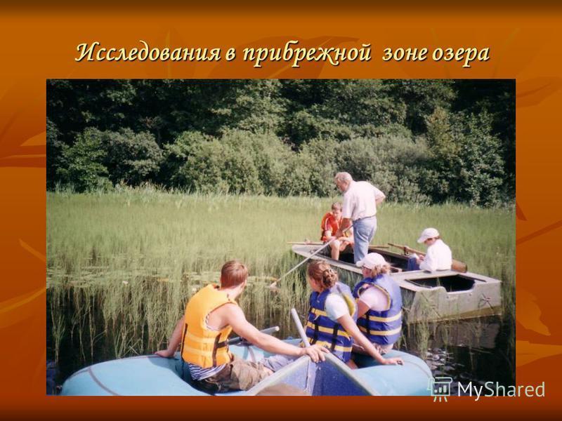 Исследования в прибрежной зоне озера