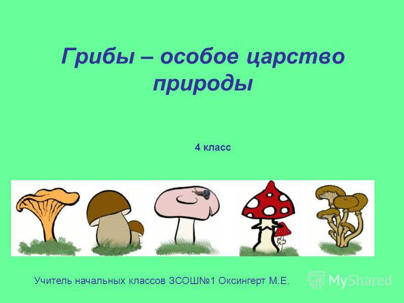 Грибы – особое царство природы Учитель начальных классов ЗСОШ1 Оксингерт М.Е. 4 класс