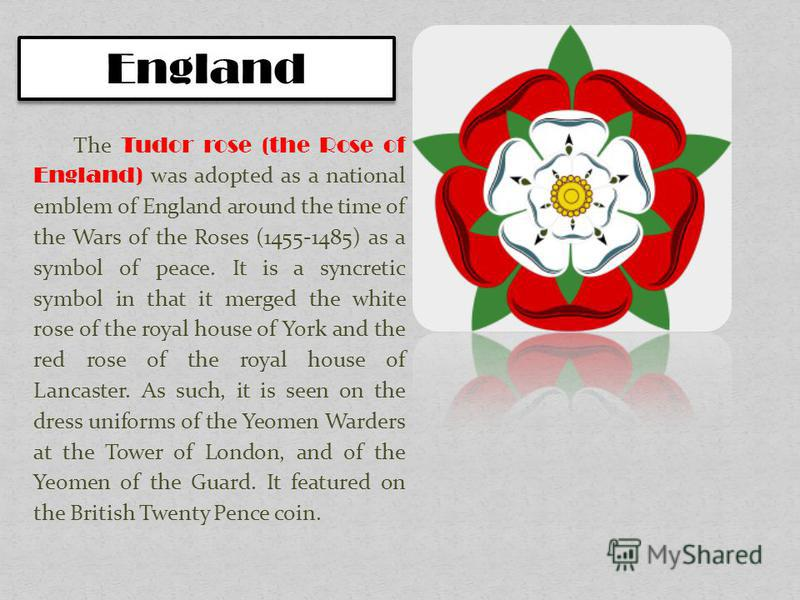 The Tudor rose (the Rose of England) was adopted as a national emblem of England around the time of the Wars of the Roses (1455-1485) as a symbol of peace. It is a syncretic symbol in that it merged the white rose of the royal house of York and the r