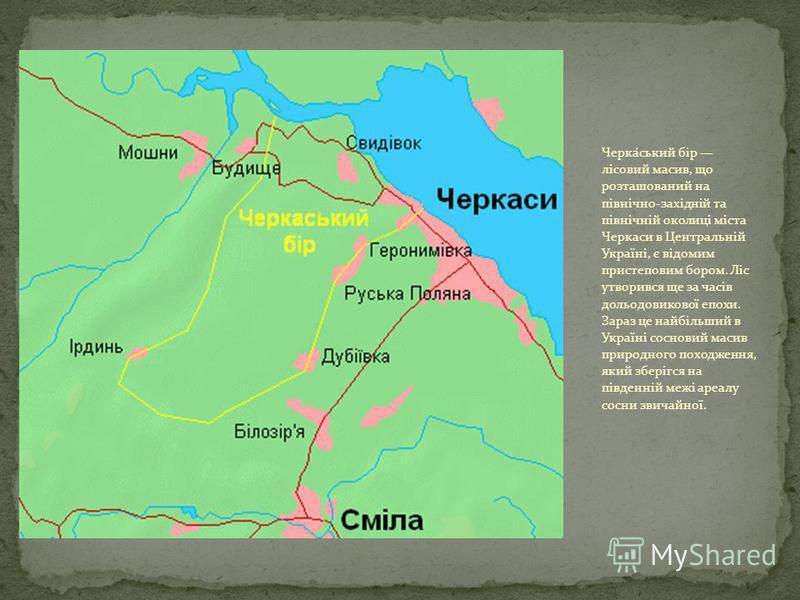 Черка́ський бір лісовий масив, що розташований на північно-західній та північній околиці міста Черкаси в Центральній Україні, є відомим пристеповим бором. Ліс утворився ще за часів дольодовикової епохи. Зараз це найбільший в Україні сосновий масив пр