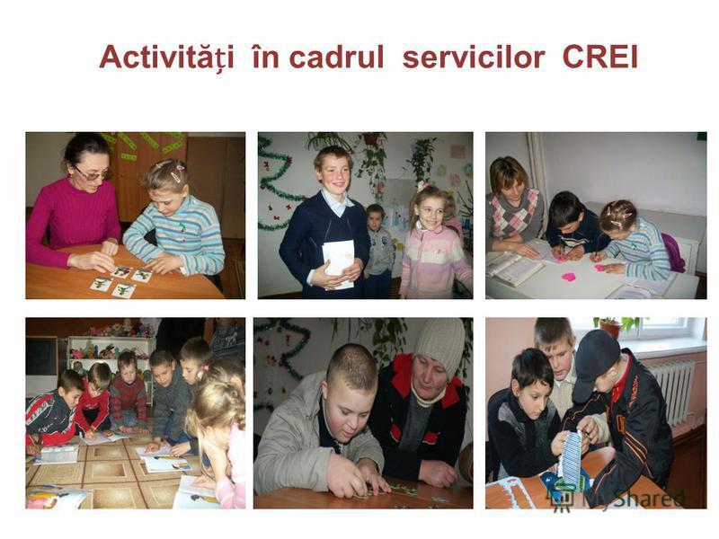 Activităi în cadrul servicilor CREI