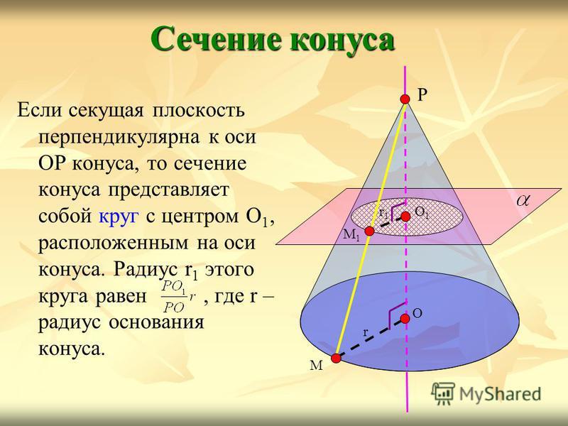 Если секущая плоскость перпендикулярна к оси ОР конуса, то сечение конуса представляет собой круг с центром О 1, расположенным на оси конуса. Радиус r 1 этого круга равен, где r – радиус основания конуса. Сечение конуса Р О М r О1О1 М1М1 r1r1