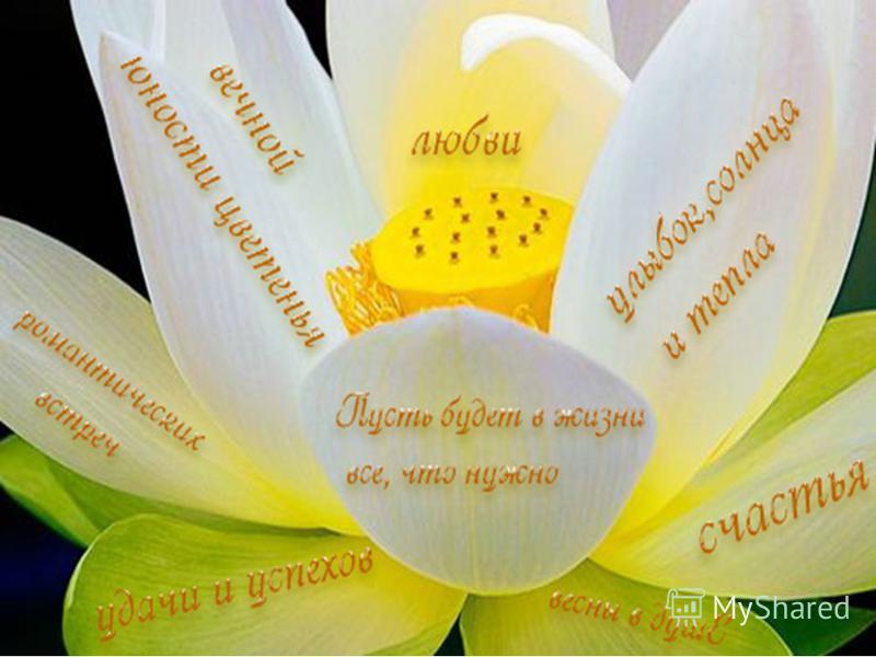 Делим солнце! Чур, на всех! Делим дождик! Чур, на всех! Зиму белую-на всех! Всё-на всех, на всех, на всех! И этот цветок необычный – на всех, на всех, на всех!