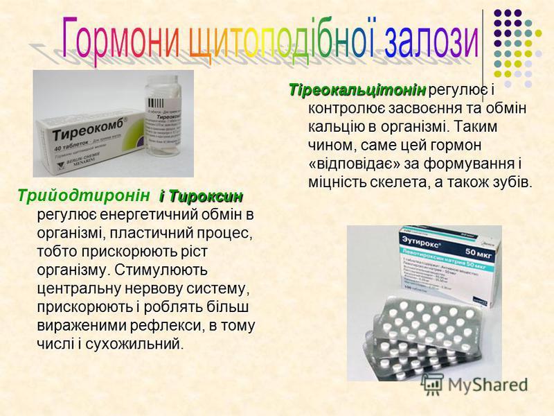 і Тироксин регулює енергетичний обмін в організмі, пластичний процес, тобто прискорюють ріст організму. Стимулюють центральну нервову систему, прискорюють і роблять більш вираженими рефлекси, в тому числі і сухожильний. Трийодтиронін і Тироксин регул
