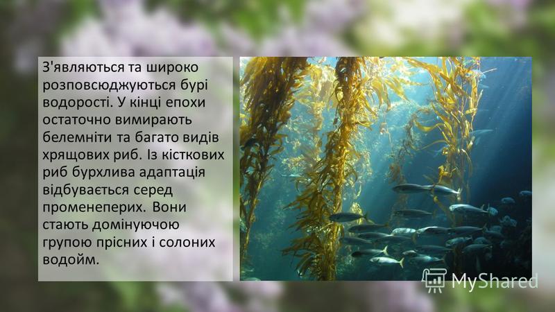 З'являються та широко розповсюджуються бурі водорості. У кінці епохи остаточно вимирають белемніти та багато видів хрящових риб. Із кісткових риб бурхлива адаптація відбувається серед променеперих. Вони стають домінуючою групою прісних і солоних водо