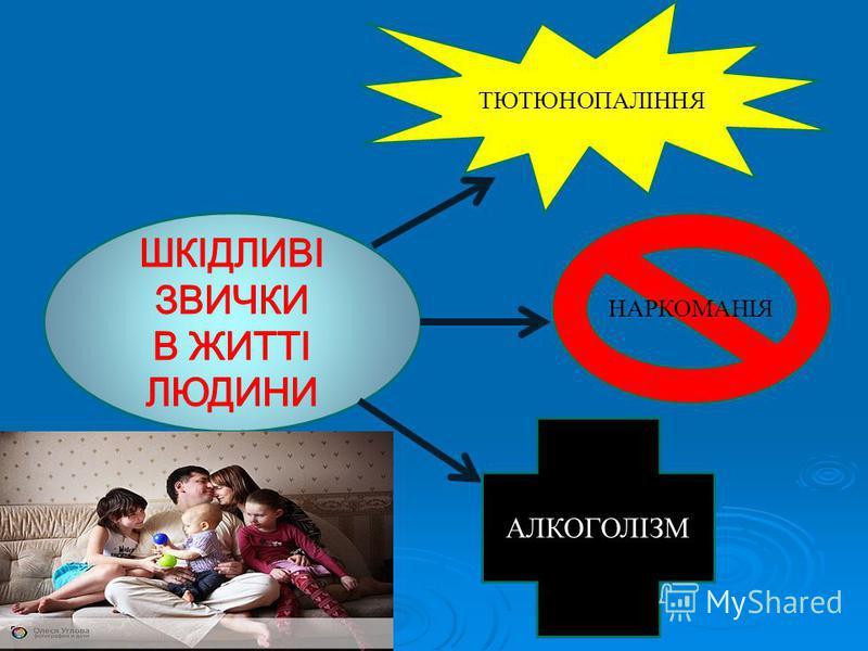 РОЗПОДІЛ ДІТЕЙ НА ГРУПИ ЗДОРОВЯ (%) РОЗПОДІЛ ДІТЕЙ НА ГРУПИ ЗДОРОВЯ (%)