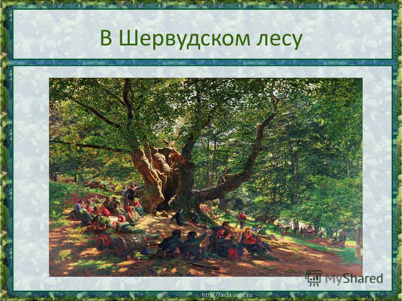 В Шервудском лесу