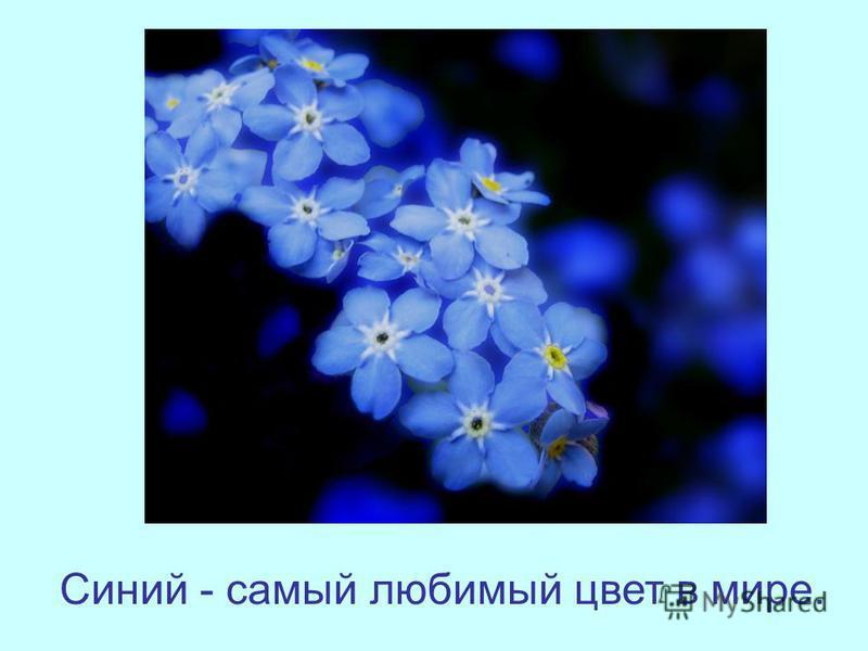 Синий - самый любимый цвет в мире.