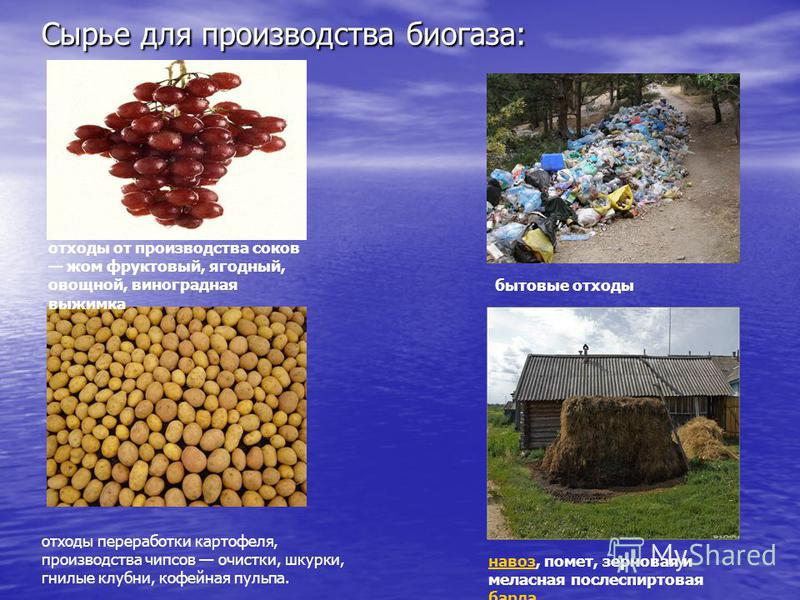 Сырье для производства биогаза: отходы от производства соков жом фруктовый, ягодный, овощной, виноградная выжимка бытовые отходы навоз, помет, зерновая и мелассная послеспиртовая барда барда отходы переработки картофеля, производства чипсов очистки,