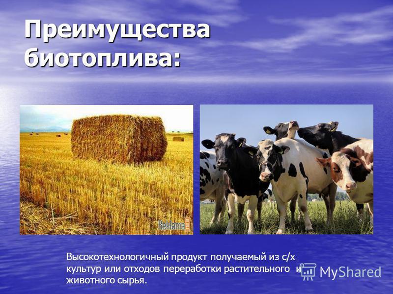 Преимущества биотоплива: Высокотехнологичный продукт получаемый из с/х культур или отходов переработки растительного и животного сырья.