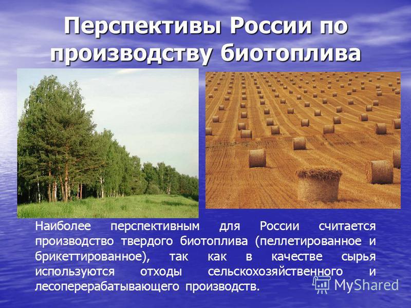 Перспективы России по производству биотоплива Наиболее перспективным для России считается производство твердого биотоплива (платированное и брикетированное), так как в качестве сырья используются отходы сельскохозяйственного и лесоперерабатывающего п