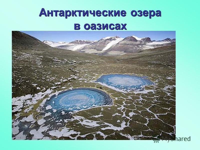 Антарктические озера в оазисах