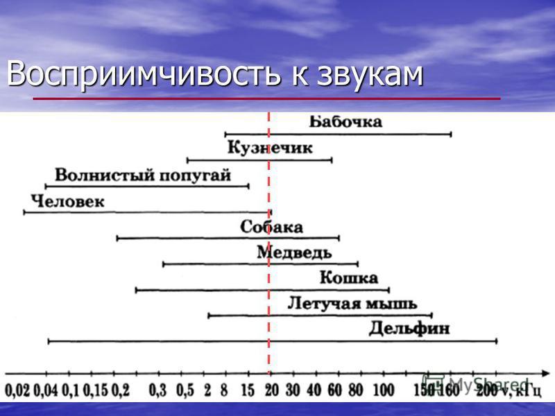 16-20 Гц 20 к Гц ν