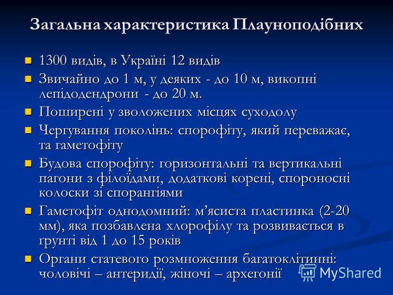 Загальна характеристика Плауноподібних 1300 видів, в Україні 12 видів 1300 видів, в Україні 12 видів Звичайно до 1 м, у деяких - до 10 м, викопні лепідодендрони - до 20 м. Звичайно до 1 м, у деяких - до 10 м, викопні лепідодендрони - до 20 м. Поширен