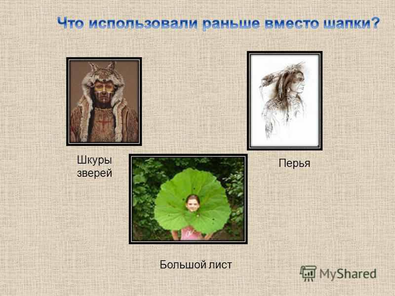 Большой лист Перья Шкуры зверей