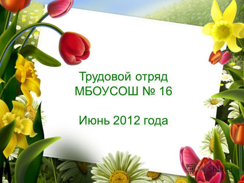 Трудовой отряд МБОУСОШ 16 Июнь 2012 года