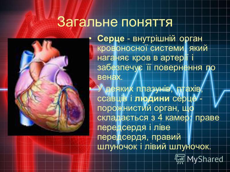 Загальне поняття Серце - внутрішній орган кровоносної системи, який наганяє кров в артерії і забезпечує її повернення по венах. У деяких плазунів, птахів, ссавців і людини серце - порожнистий орган, що складається з 4 камер: праве передсердя і ліве п