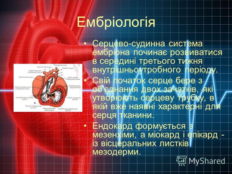 Ембріологія Серцево-судинна система ембріона починає розвиватися в середині третього тижня внутрішньоутробного періоду. Свій початок серце бере з об'єднання двох зачатків, які утворюють серцеву трубку, в якій вже наявні характерні для серця тканини.