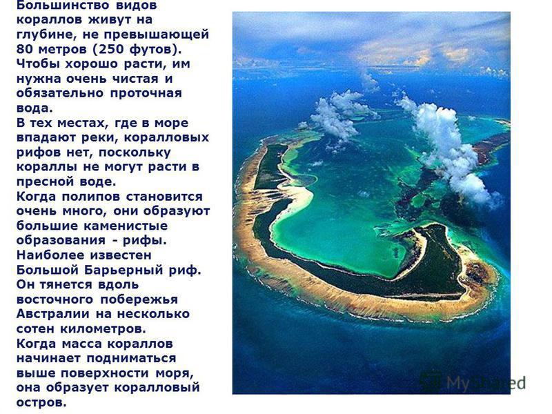Коралловые острова. Большинство видов кораллов живут на глубине, не превышающей 80 метров (250 футов). Чтобы хорошо расти, им нужна очень чистая и обязательно проточная вода. В тех местах, где в море впадают реки, коралловых рифов нет, поскольку кора