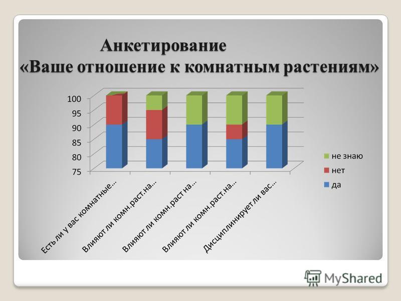 Анкетирование «Ваше отношение к комнатным растениям»
