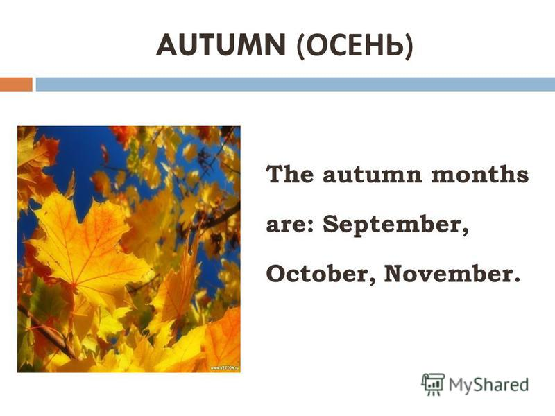 AUTUMN ( ОСЕНЬ ) The autumn months are: September, October, November.