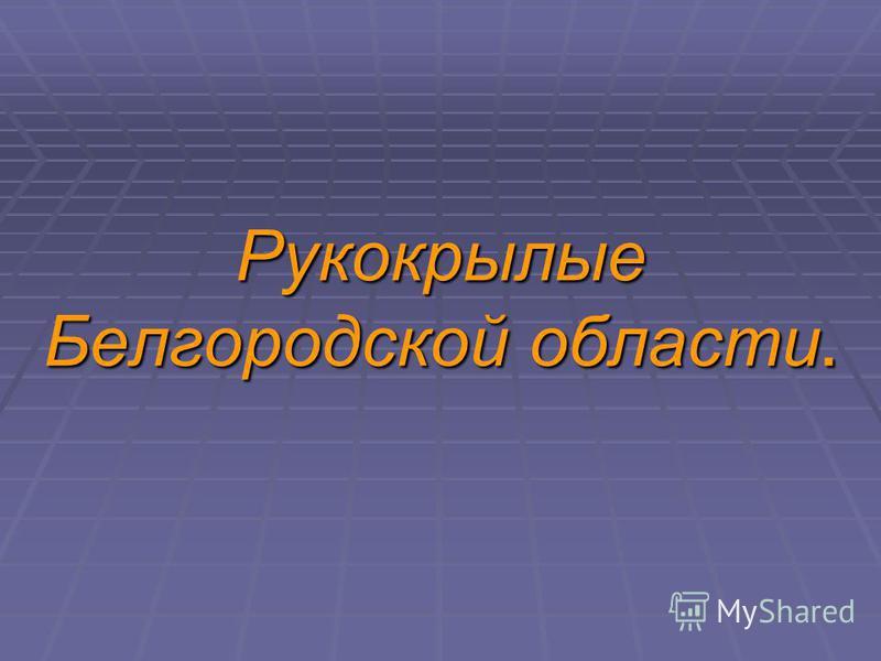 Рукокрылые Белгородской области.