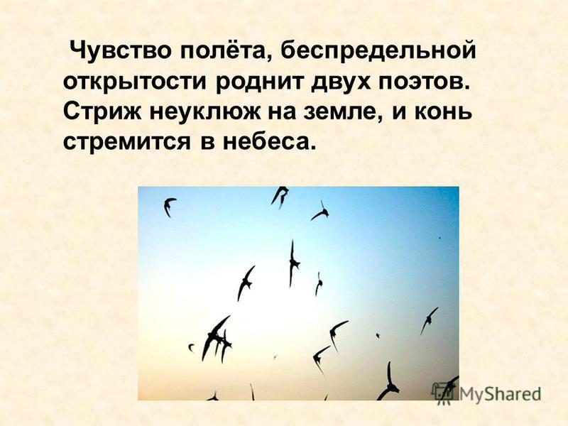 Чувство полёта, беспредельной открытости роднит двух поэтов. Стриж неуклюж на земле, и конь стремится в небеса.