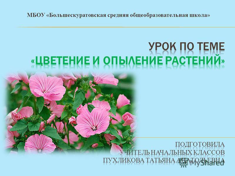 МБОУ «Большескуратовская средняя общеобразовательная школа»