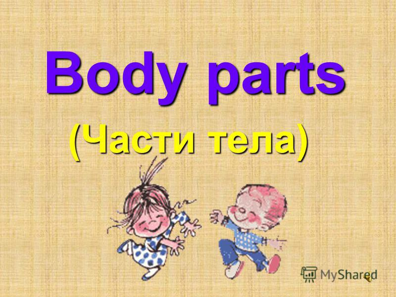 Body parts (Части тела)