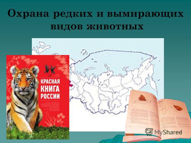 Охрана редких и вымирающих видов животных