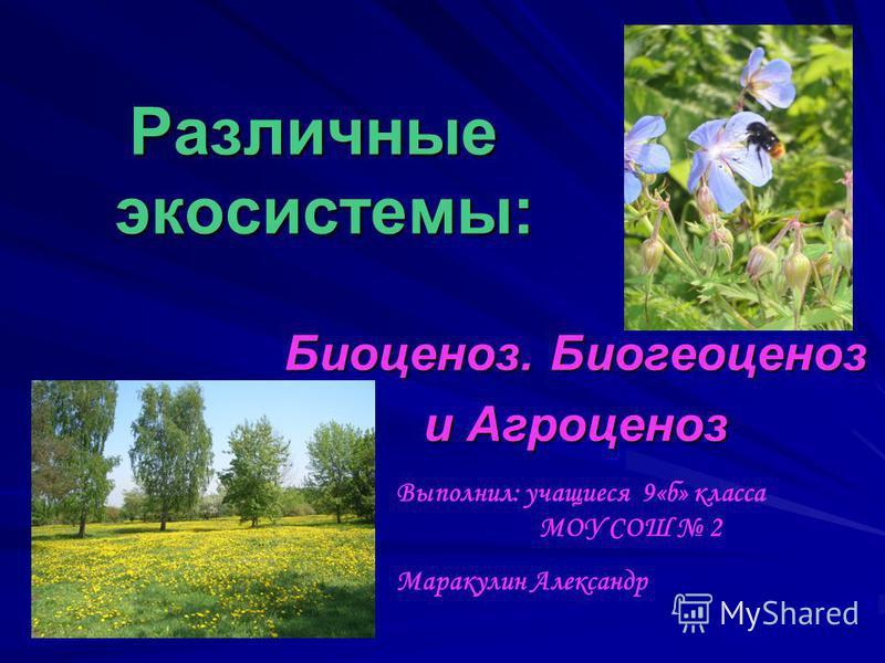 Различные экосистемы: Биоценоз. Биогеоценоз и Агроценоз Выполнил: учащиеся 9«б» класса МОУ СОШ 2 Маракулин Александр