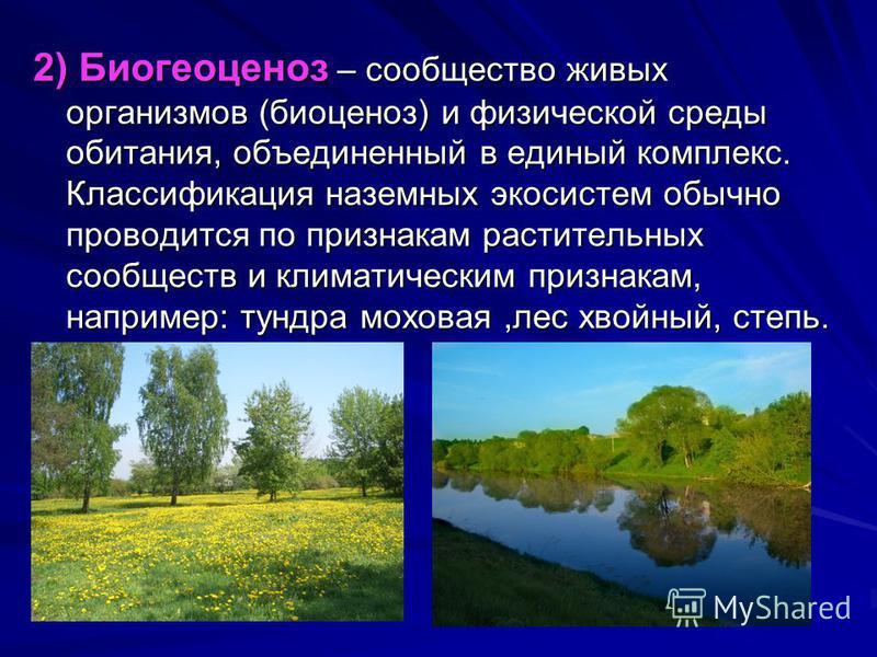 2) Биогеоценоз – сообщество живых организмов (биоценоз) и физической среды обитания, объединенный в единый комплекс. Классификация наземных экосистем обычно проводится по признакам растительных сообществ и климатическим признакам, например: тундра мо